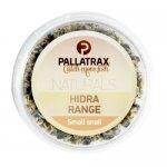 Pallatrax Hidra Small Snail, szárított hidra