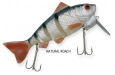 RAPTURE DANCER PERCH WOBBLER NATURAL ROACH 16cm 60g