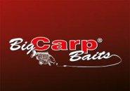 BIG CARP BAG & STICKMIX COMBO  TÉLI FRISS GYÜMÖLCS 500 GR + LIQUID