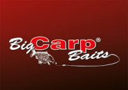 BIG CARP FLUORE ESSENCE OPTIC P DIP 50GR MONSTER C