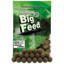 Haldorádó Big Feed - C21 Boilie - Fűszeres Kolbász